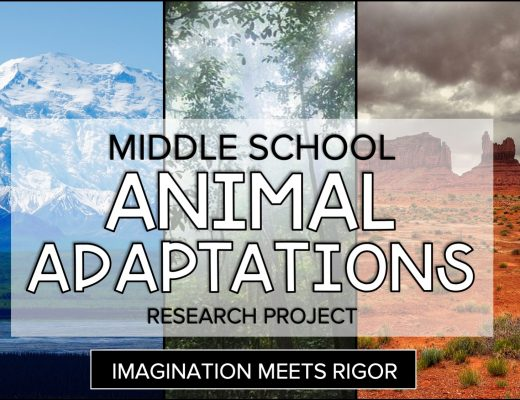 Tundra Rainforest Desert Middle School Animal Adaptation Project