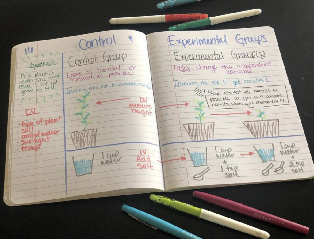Notes comparing independent and dependent variables using plants and different amounts of salt water.